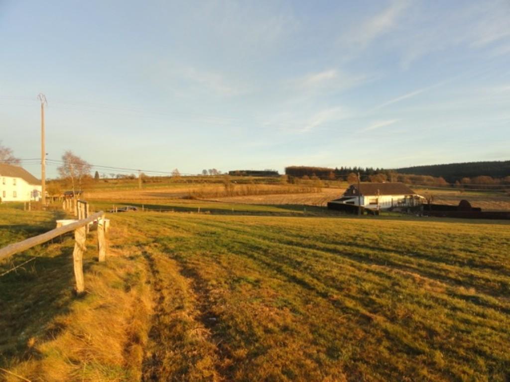 AMEL (Wallerode): Terrain à bâtir + prairie